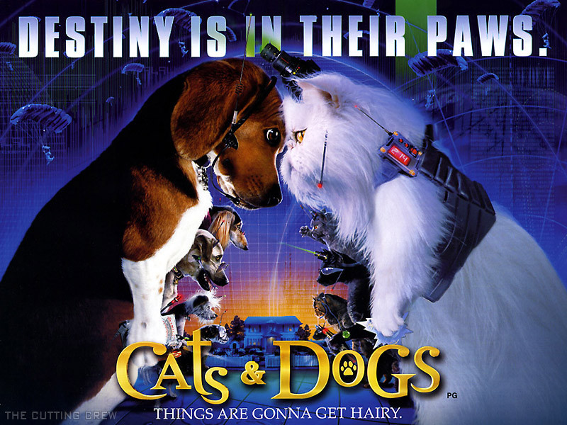 Cats & Dogs 152354