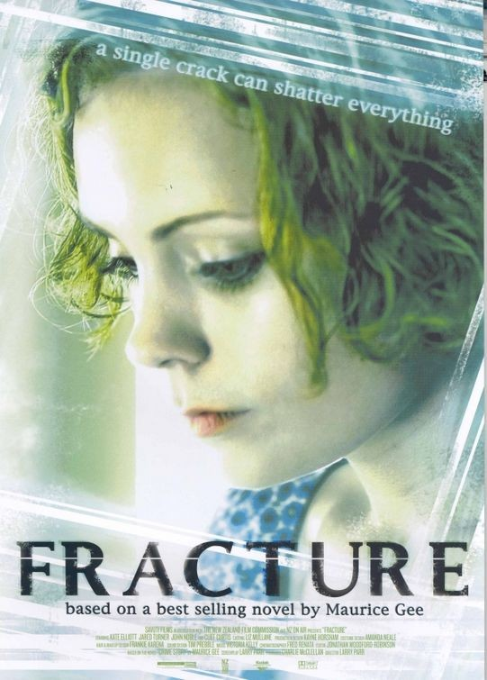 Fracture 135308