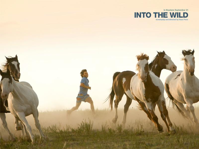 Into the Wild 152629