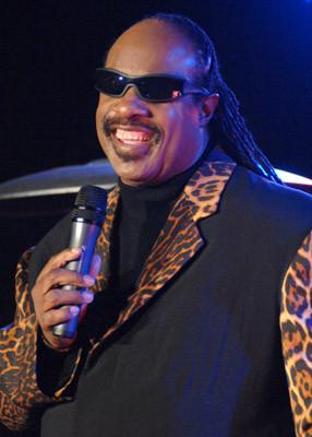 Stevie Wonder 176270